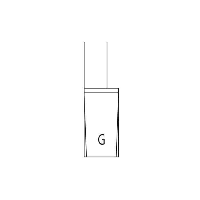 Form_G